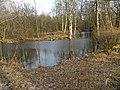 Дача Чернова. пруды01.jpg