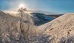 Зима в заказнике Брык 2.jpg