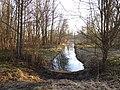 Канал впадает в Филькино озеро.JPG