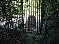 Лев в Ялтинском зоопарке.jpg