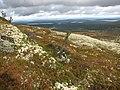 На горе Нахкатундра. - panoramio - Александр Скороход.jpg
