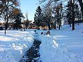 Острозький парк - зима.jpg