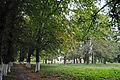 Парк у Вороновиці DSC 1748.JPG
