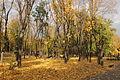 Парк імені Шевченка 05.JPG