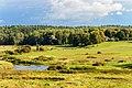 Пушкиногорье. Вид на реку Сороть, мельницу и сельцо Михайловское с Савкиной Горки.jpg