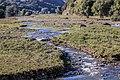 Река в Кедабеке.jpg