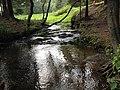 Ручей у Кабалинских родников - panoramio.jpg