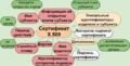 Структура сертификата X.509.png