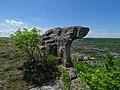 Тракийското скално светилище над Провадия.jpg