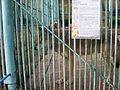 Якутский зоопарк 19.JPG