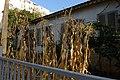 הבית הראשון בית יוספזון - אתרי מורשת במרכז הארץ 2015 - רחובות (18).JPG