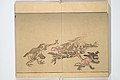 『暁斎百鬼画談』-Kyōsai's Pictures of One Hundred Demons (Kyōsai hyakki gadan) MET 2013 767 26.jpg
