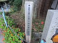 下百古里の将軍杉 - panoramio.jpg