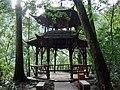 四川 青城山-天然藤木造的独特凉亭 - panoramio.jpg