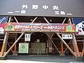 外野中央 神宮 (6301290439).jpg