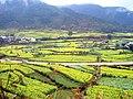 婺源映像(Wuyuan)-9 - panoramio.jpg