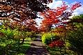 平岡樹芸センター(Hiraoka arboriculture center) - panoramio (7).jpg