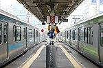 日本 ドイツ (167080376).jpg