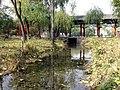 桥头公园·小溪 - panoramio.jpg