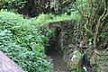 樹林石灰坑拱橋.jpg