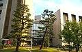 理学部A館&理学部B館 名古屋大学東山地区.jpg