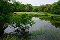頭寮溼地 Touliao Wetland - panoramio.jpg