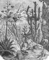 015-Mexican Cacti.jpg