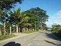 1340Franciso Viola Highway San Rafael Bulacan 04.jpg