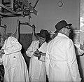 1958 visite d'une délégation INRA au Haras du Pin Cliché Jean Joseph Weber-43.jpg