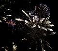 2010 07 14 bastille day fireworks 052 (4839484214).jpg