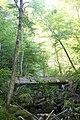20111022 Uisge Ban Falls Provincial Park 14.jpg