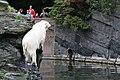 2012-09-15 Tierpark Berlin 20.jpg