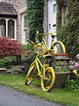 2014 Yellow bicycles Healaugh.jpg