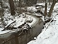 2016-02-15 08 40 09 View east up a snowy Cain Branch of Cub Run in the Armfield Farm section of Chantilly, Fairfax County, Virginia.jpg
