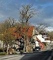 2018-01-10 Linde am Knickberg, Weine, NRW 01.jpg