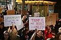 2018 San Francisco Women's March (9377).jpg