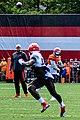 2019 Cleveland Browns Training Camp (48532210077).jpg