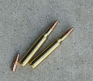 270 Winchester Cartridge.jpg