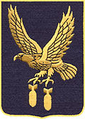 351st Bomb Group Badge.jpg