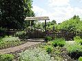 3682 20160522 садиба Кочубея Батурин.jpg