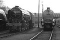 60532 and 60009 Barrow Hill.jpg