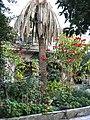 9הגן הפנימי של מנזר האחיות ציון.jpg