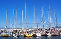 Açores 2010-07-18 (5043265675).jpg