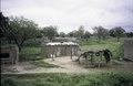 ASC Leiden - van Achterberg Collection - 5 - 028 - Bâtiments ronds de faible hauteur en briques d'argile - En route de Bobo-Dioulasso à Ouagadougou, Burkina Faso, 19-26 août 2001.tif