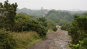 A Cornish Mining Walk - geograph.org.uk - 588567.jpg
