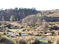 A Dartmoor valley - geograph.org.uk - 1070759.jpg
