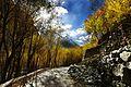 A Road of Khaplu Valley, Gilgit-Baltistan, Pakistan.jpg