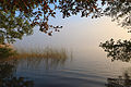 A Window to the Misty Lake (5087004050).jpg