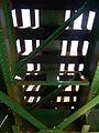A Zagyva felett vasúti híd, talpfák alulnézetben, 2017 Hatvan.jpg