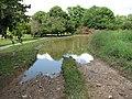 A flooded farm track - geograph.org.uk - 1397383.jpg
